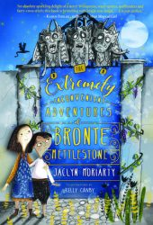 The Extremely Inconvenient Adventures of Bronte Mettlestone (Kingdoms & Empires, #1) Pdf Book