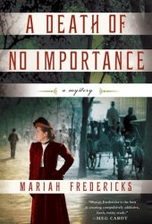 A Death of No Importance Pdf Book