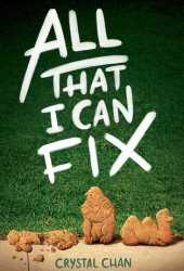 All That I Can Fix Book