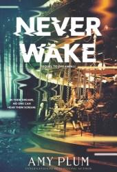 Neverwake (Dreamfall #2) Pdf Book