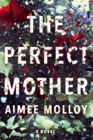 The Perfect Mother Book Pdf ePub