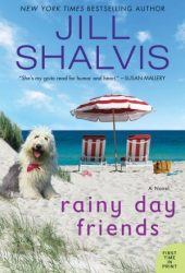 Rainy Day Friends (Wildstone, #2) Pdf Book