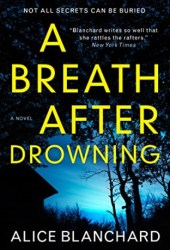 A Breath After Drowning Book