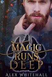 Magic Runs Deep Book
