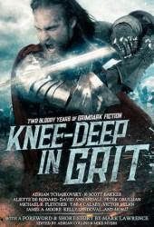 Knee-Deep in Grit: Two Bloody Years of Grimdark Fiction Book