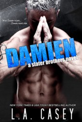 Damien (Slater Brothers, #5)