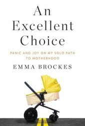 An Excellent Choice: Panic and Joy on My Solo Path to Motherhood Book