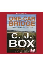 One-Car Bridge