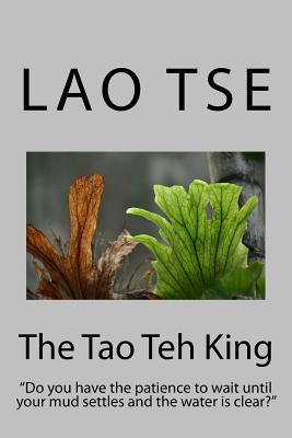 The Tao Teh King: Do You Have the Patience to Wait Until Your Mud Settles and the Water Is Clear?