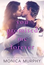 You Promised Me Forever (Forever Yours, #1) Pdf Book