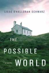The Possible World Pdf Book