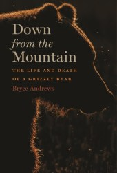 Down from the Mountain: The Life and Death of a Grizzly Bear Pdf Book