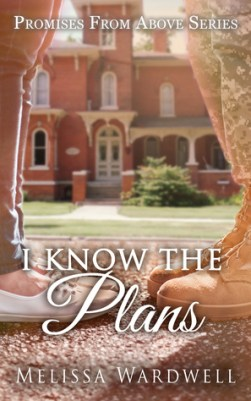 I Know the Plans (Promises from Above #3)