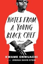 Notes from a Young Black Chef Pdf Book