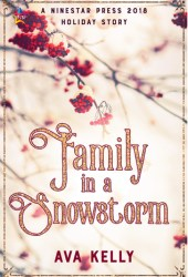 Family in a Snowstorm (Snow Globes, #2) Pdf Book