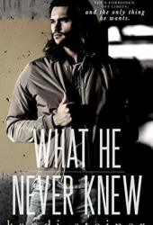What He Never Knew (What He Doesn't Know, #3) Pdf Book