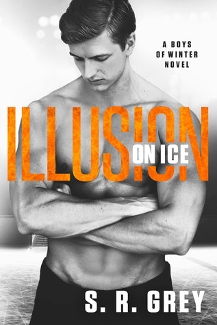 Recensie: Illusion on ice van S.R. Grey