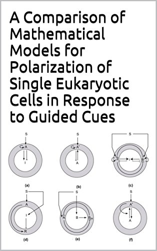 A Comparison of Mathematical Models for Polarization of Single Eukaryotic Cells in Response to Guided Cues