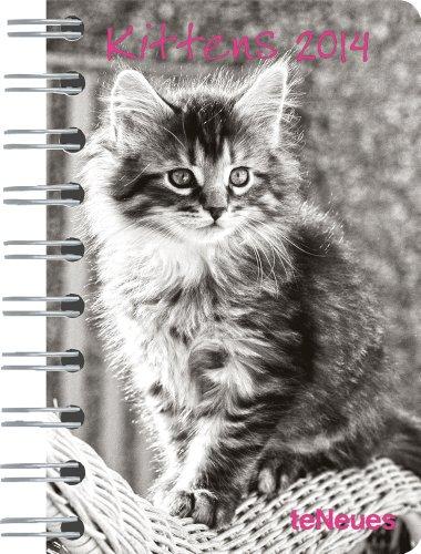 2014 Kittens Pocket Deluxe Diary