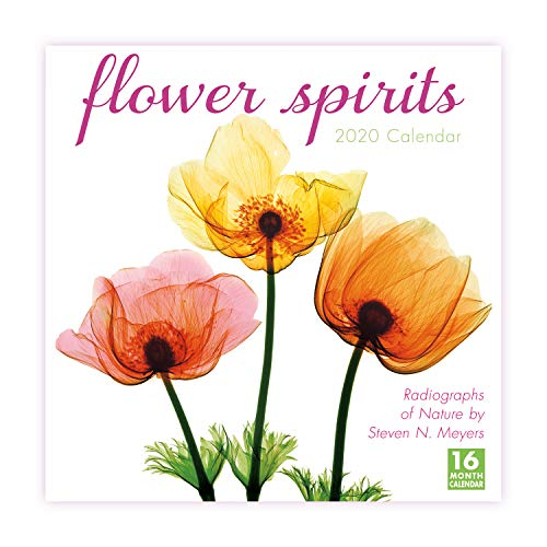 2020 Flower Spirits Radiographs of Nature by Steven N. Meyers 16-Month Wall Calendar: By Sellers Publishing