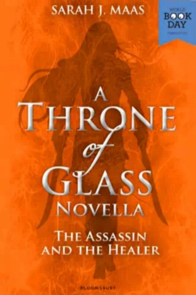 The Assassin and the Healer (Throne of Glass, #0.2)