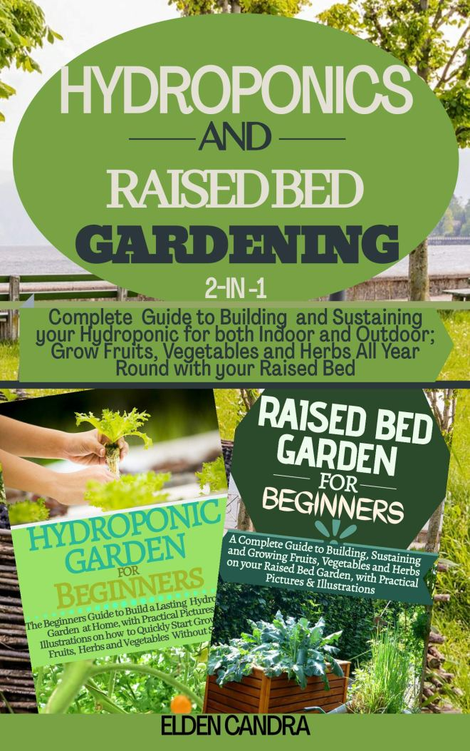HYDROPONICS AND RAISED BED GARDENING: 2-IN-1:Complete Guide to Building and Sustaining your Hydroponic for both Indoor and Outdoor;Grow Fruits,Vegetables and Herbs all Year Round with your Raised bed