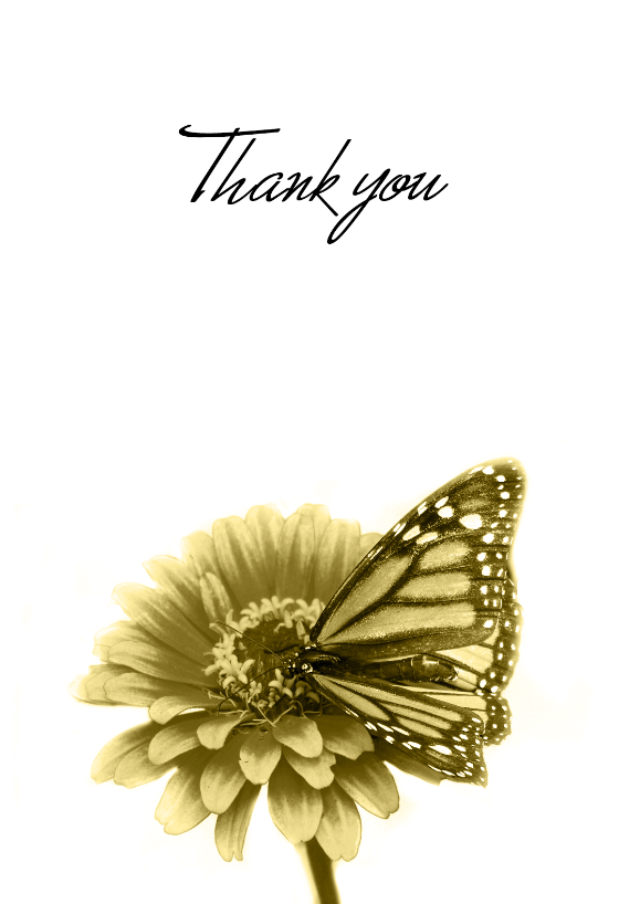 Thank You Butterfly Thank You Card Template Free
