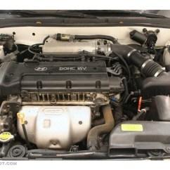 2000 Hyundai Elantra Engine Diagram Field Dressing A Deer Dohc Pictures