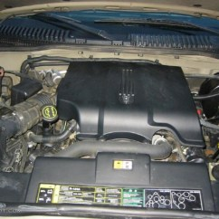 1999 Ford Explorer Engine Diagram Taproot Plant Xlt Lincoln