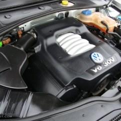 2000 Vw Passat Vacuum Hose Diagram Dog Hind Leg 2 8 Liter V6 Engine Free Image For