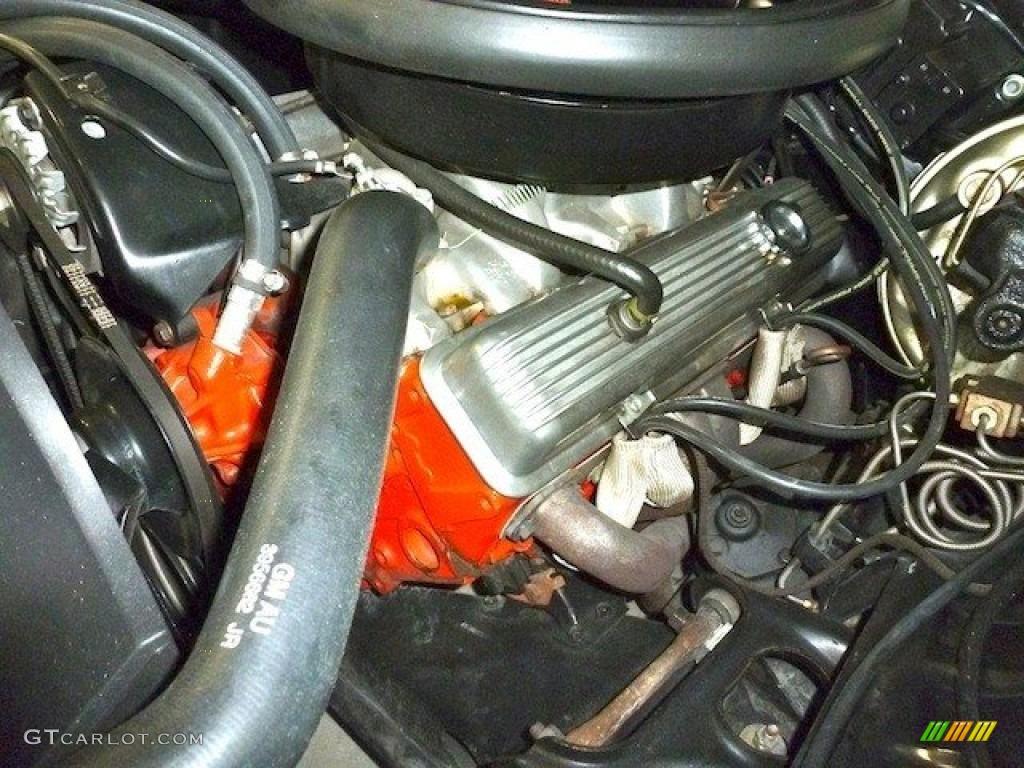 Motor Chevy 302 1981