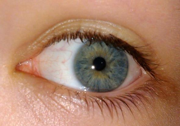 Augen grüne oder blaue Unsere Augenfarbe