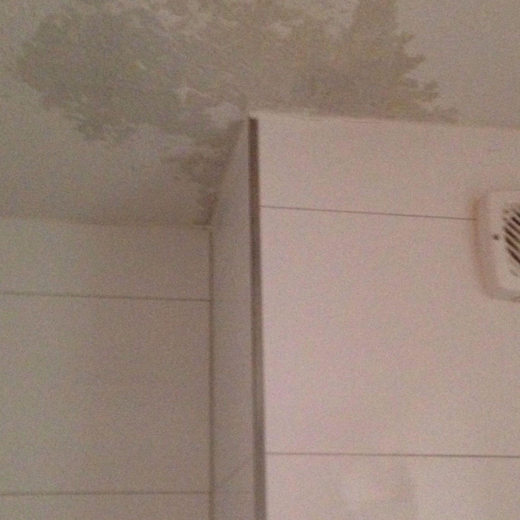 Ein grer werdender Wasser Fleck im Bad an der Decke