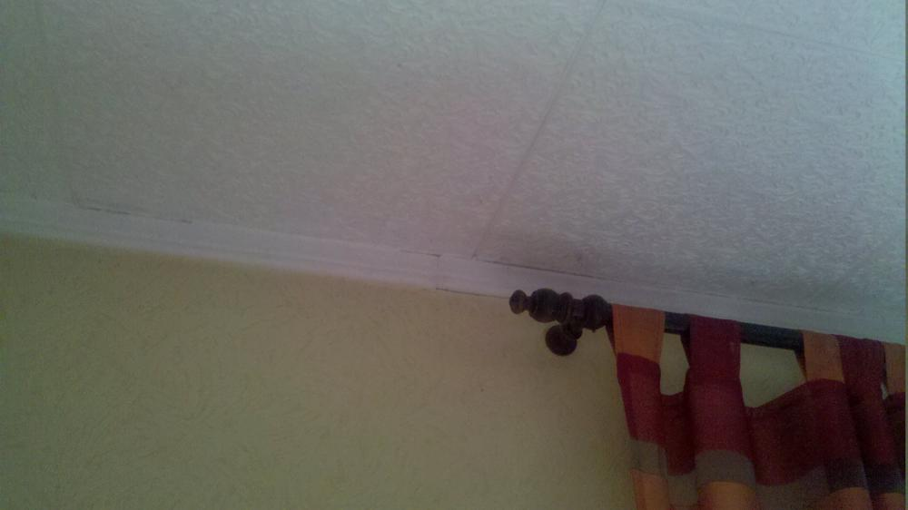 Feuchte Stellen an der Decke Woher kommen diese Wohnung Schimmel Wand