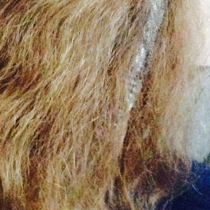 Dauerwelle Haare Kaputt