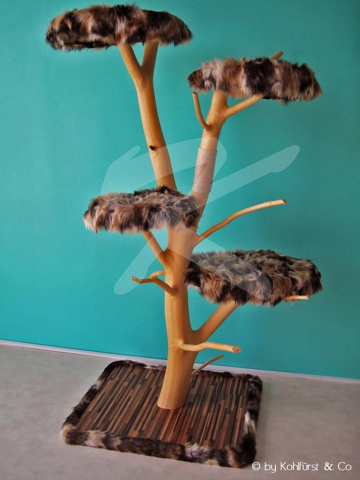 Katzenbaum bauen Katzen