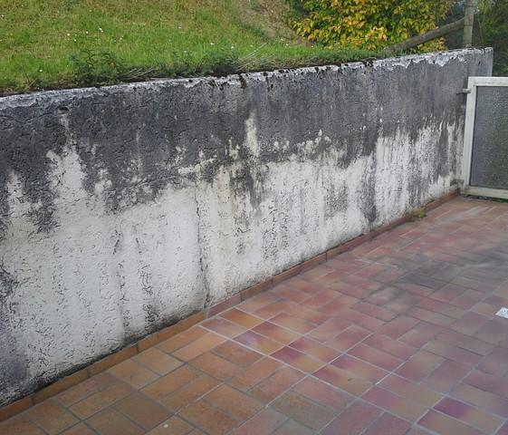 Gemeinsame Alte Mauer Streichen - TheRichDaily.com @GM_06