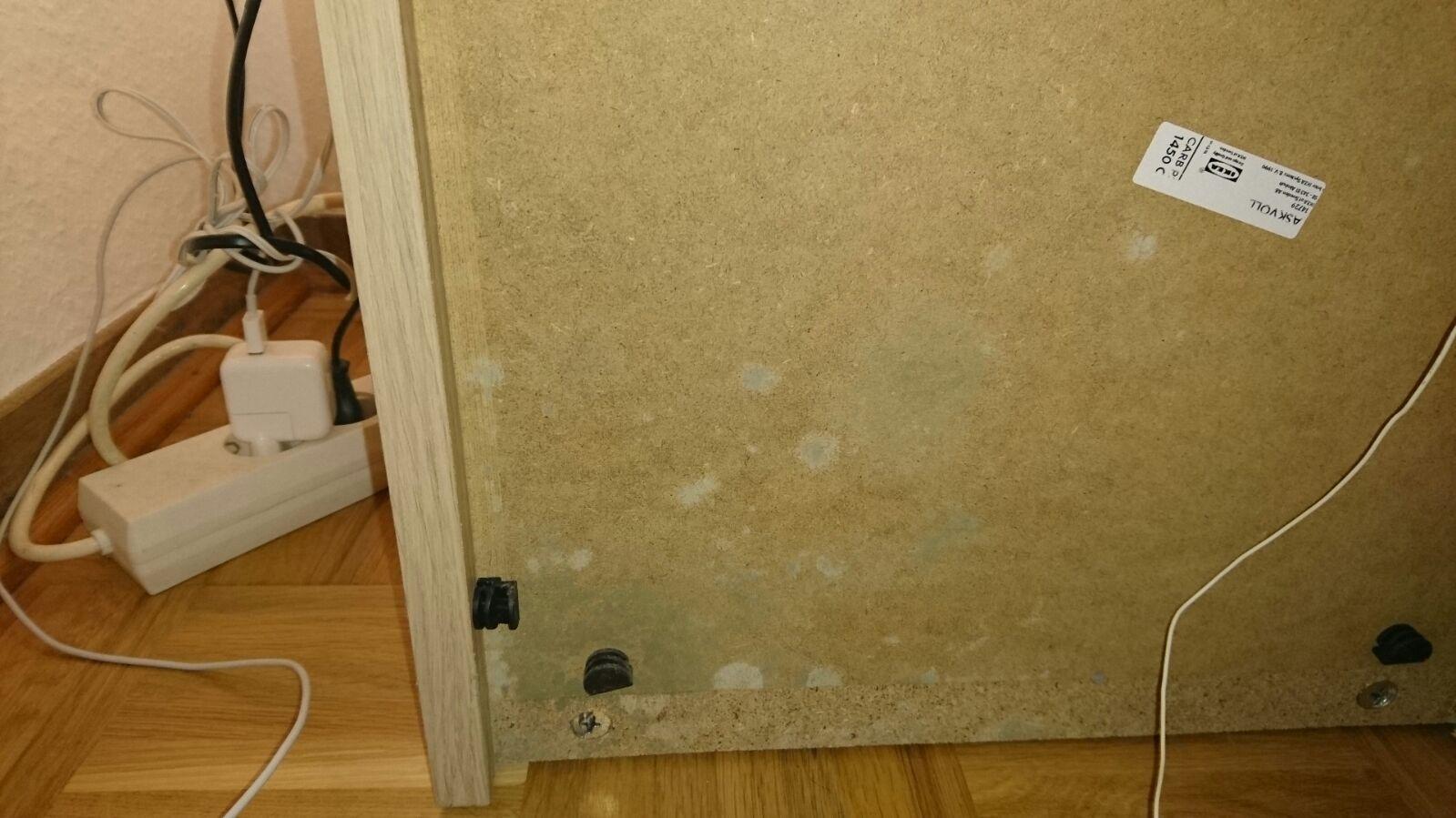 Ameisen Im Badezimmer