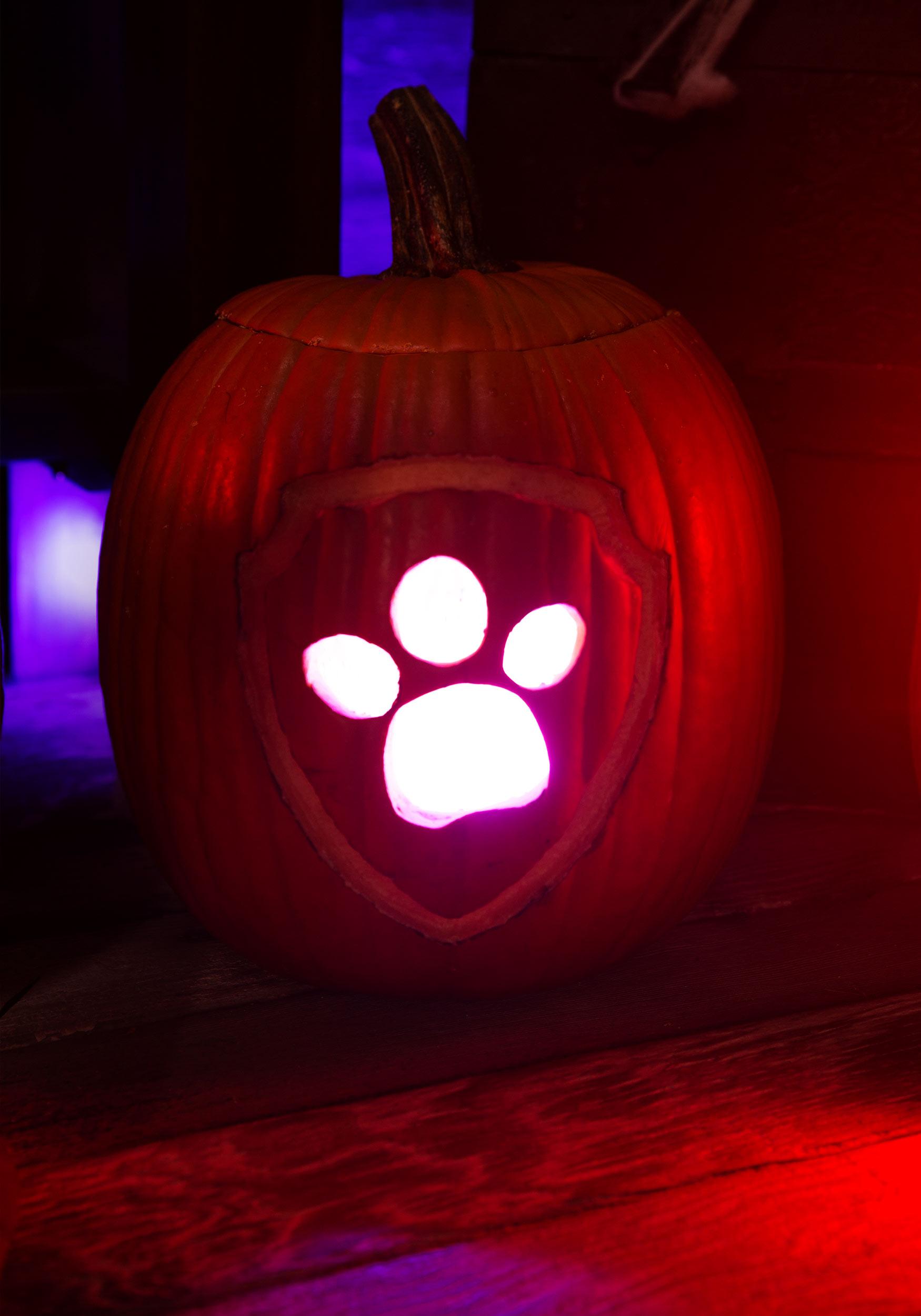 Paw Patrol Pumpkin Carving Easy
