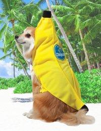 Banana Costumes