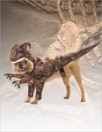 Dinosaur Costumes - Kids, Toddler Dinosaur Halloween Costume