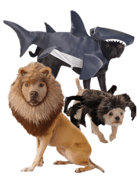 Animal Costumes For Pets