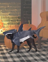 Pet Costumes - Cat & Dog Halloween Costumes ...