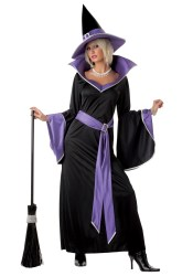 witch costume halloween costumes glamour adult plus scary gothic witches outfit glamorous purple sizes halloweencostumes vampire wizard google