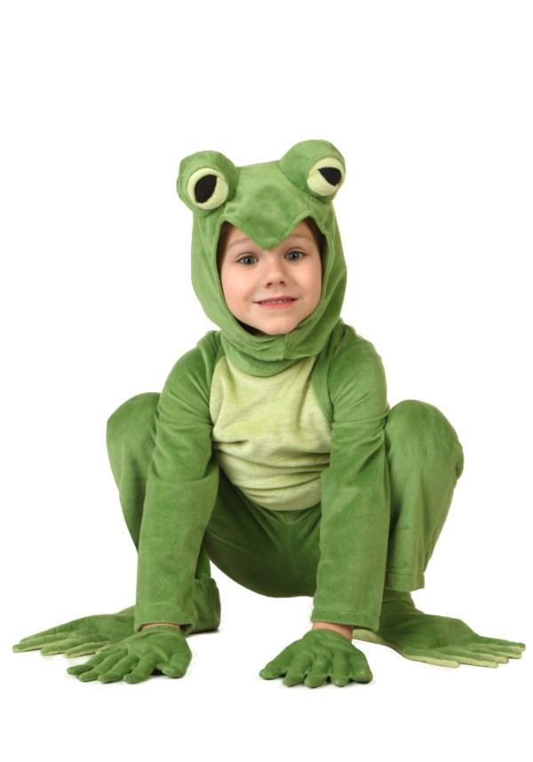 Toddler Frog Costume