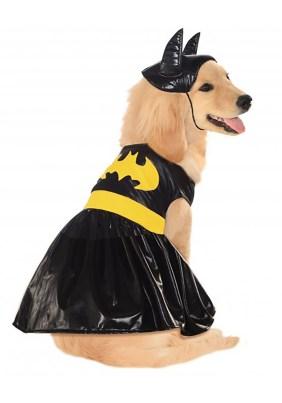 bat girl, dog costume