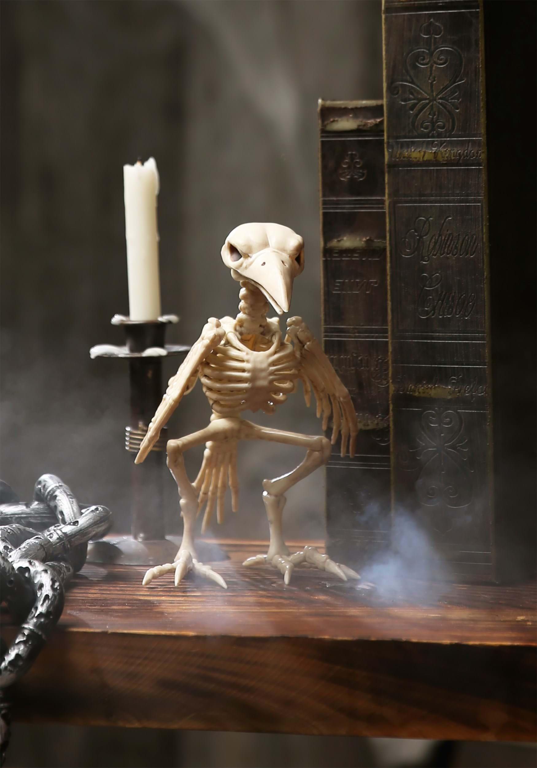 ostrich skeleton diagram balboa instruments wiring 8 quot raven prop