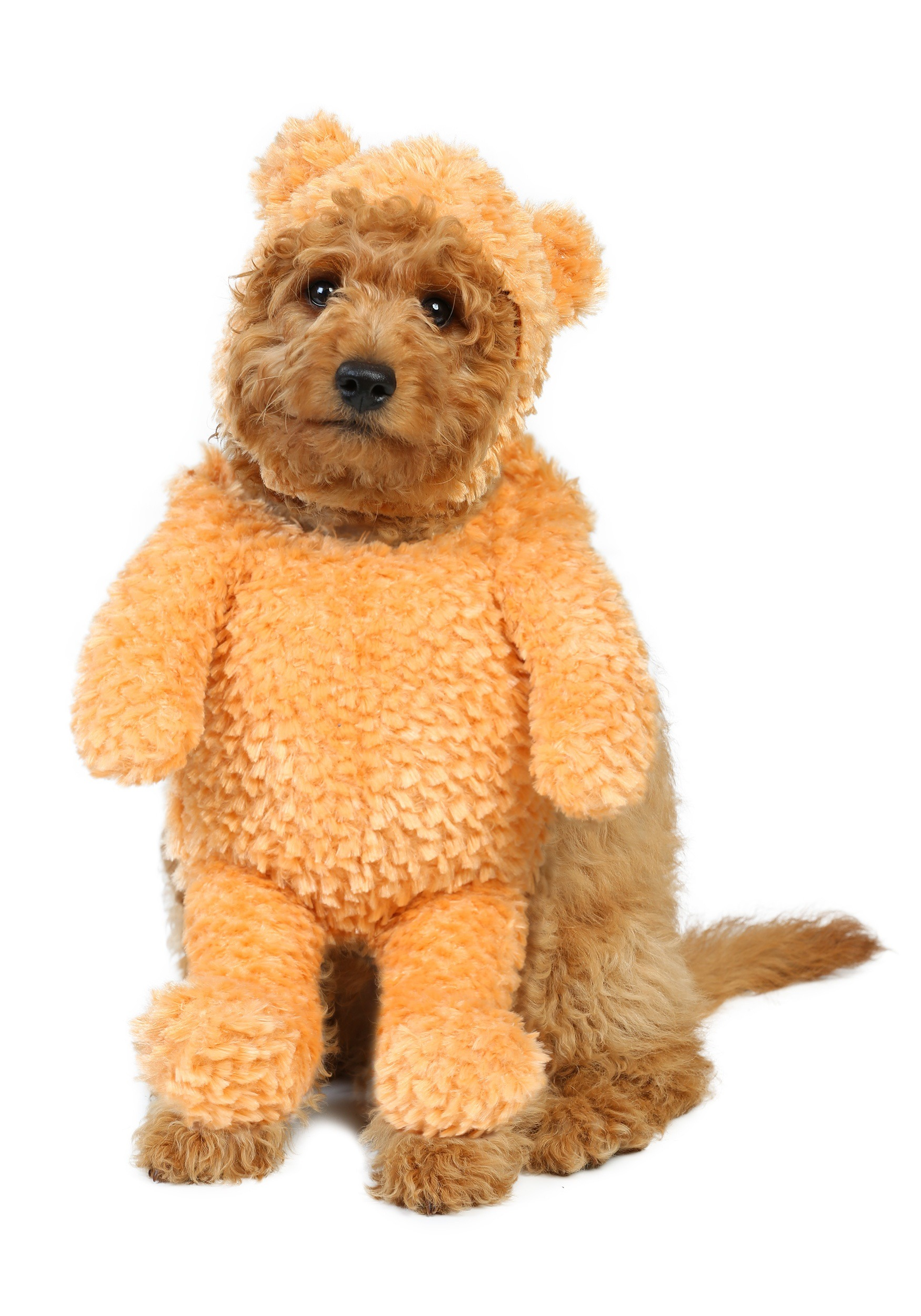 Teddy Bear Dog Costume