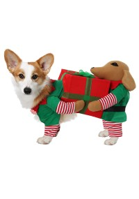Santa's Little Helper Costume for Dogs