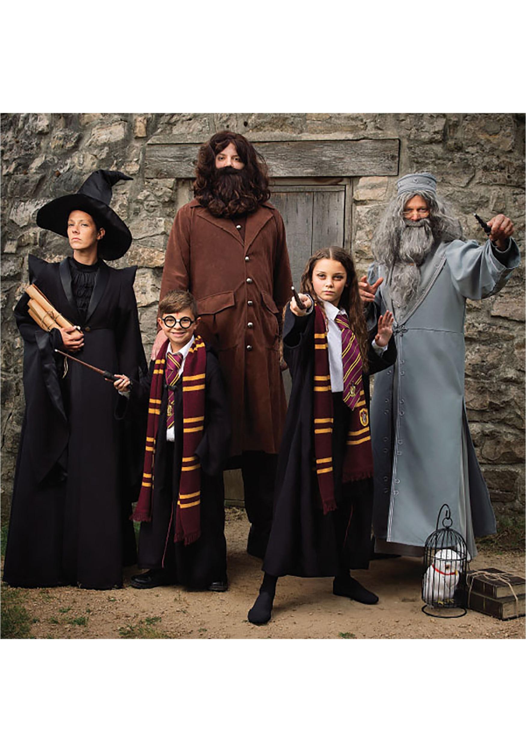 Harry Potter Deluxe Hagrid Plus Size Costume For Men